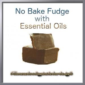 No Bake Fudge With Essential Oils